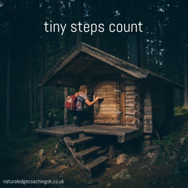 tiny-steps-2